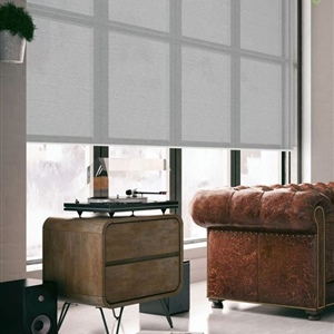 Translucent Roller blinds by Wilson- Broome II