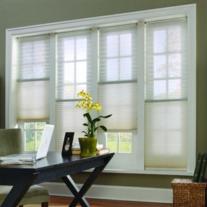 Day and Night Honeycomb blinds